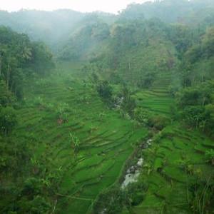 Bandung2012